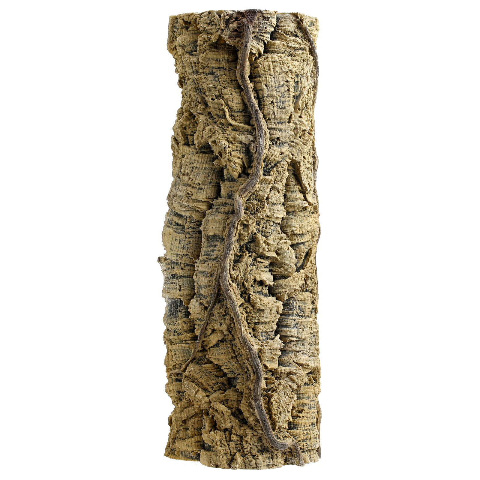 Back to Nature - Liana tree trunk