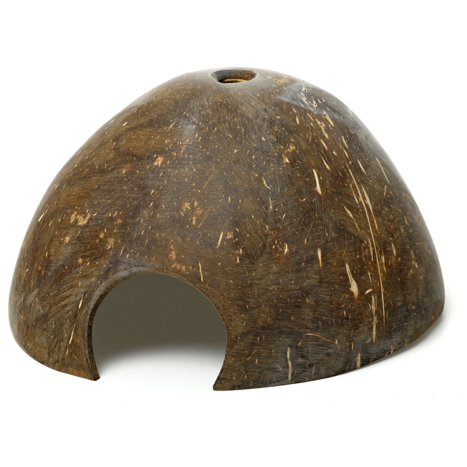 Coconut half shell