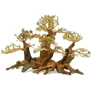 Forest-Bonsai - L - 3