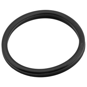 Oase - Prefilter Replacement Seal- BioMaster